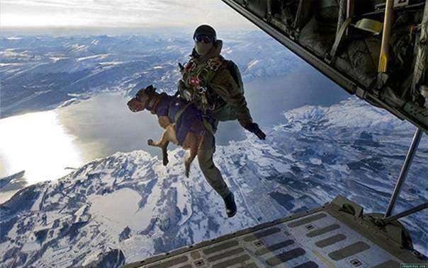 10 невероятных военных фотографий (10 фото)