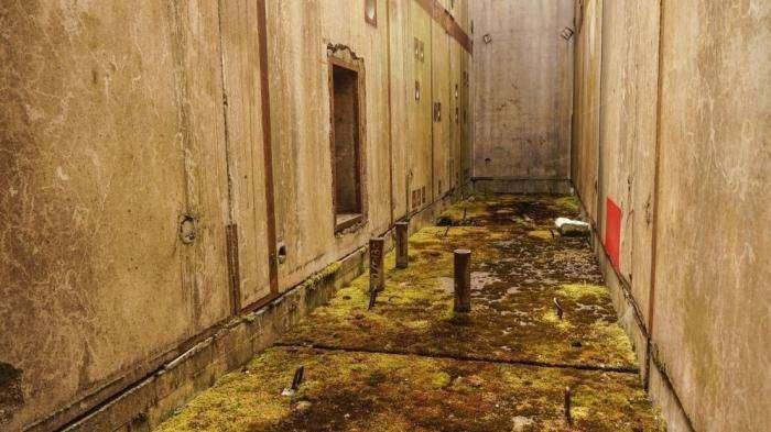 Заброшенная электростанция в Польше (7 фото)