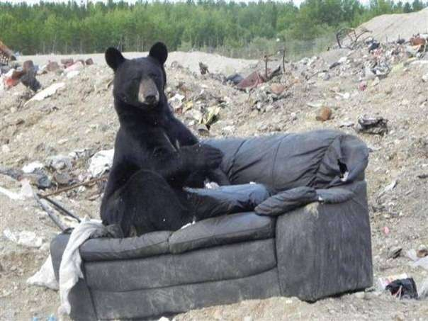 Удобный старый диван )