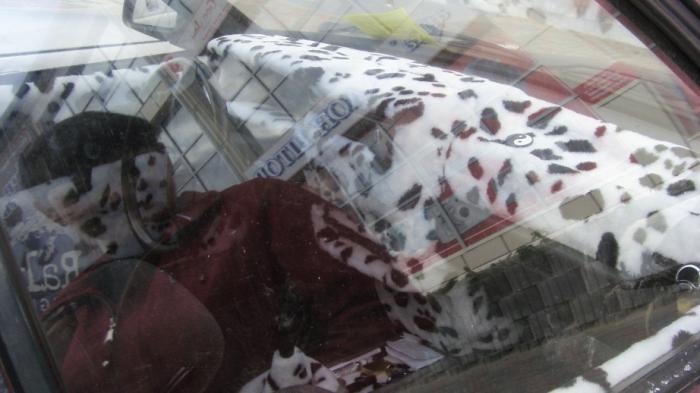 Машина-долматинец (2 фото)