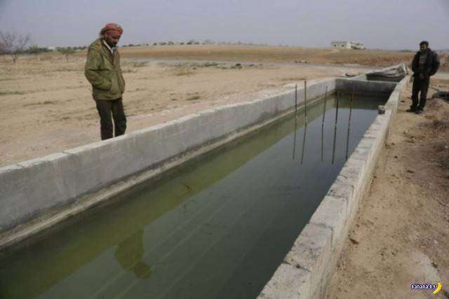 Деревенский нефтеперерабатывающий завод в Сирии