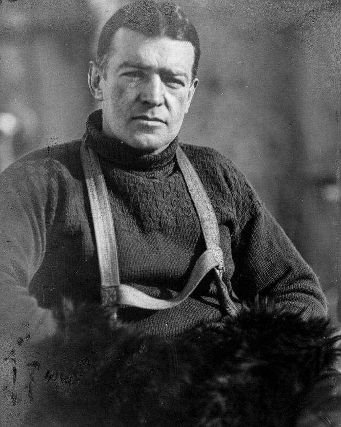 69 съеденных собак и один вкусный корабельный кот: История Имперской трансантарктической экспедиции