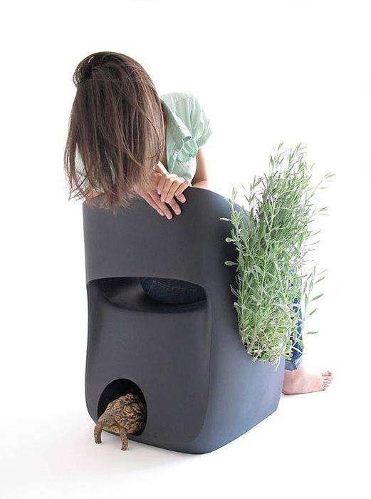 Домик черепахи может быть спрятан под таким креслом