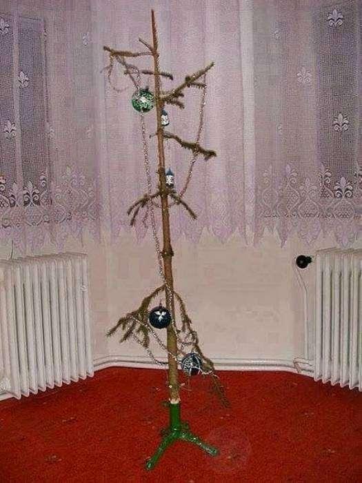 Все, что осталось от праздничного дерева.