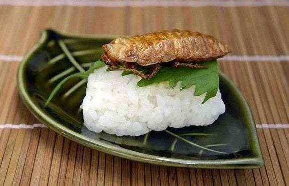Приятного аппетита по-японски (10 фото)