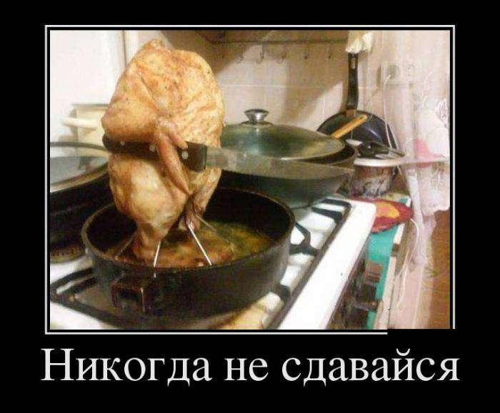 Демотиваторы на 18.01.2016г (30 фото)