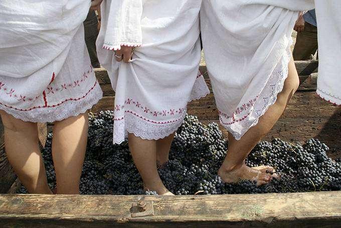 Куда поехать за лучшим в мире вином (10 фото)