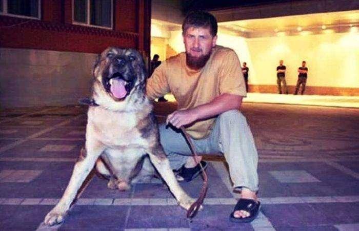 Спикер пригрозил оппозиционерам овчаркой Кадырова (2 фото)
