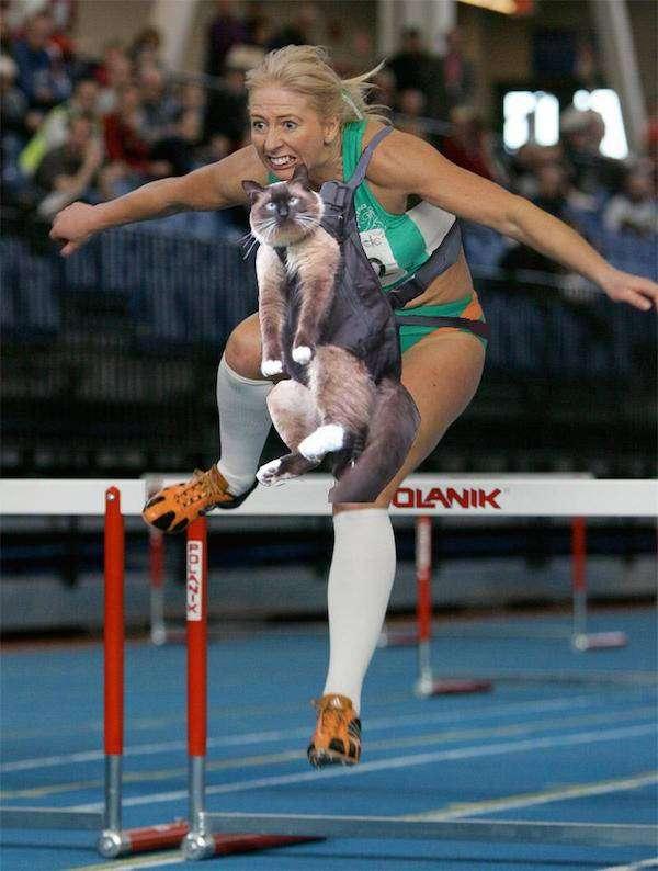 Фотожабы ирландской спортсменки (21 фото)