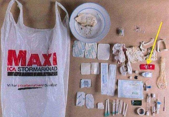 В Швеции врач-терапевт похитил девушку (8 фото)