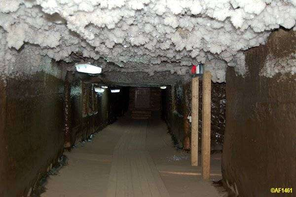 Подземелья института мерзлотоведения (29 фото)