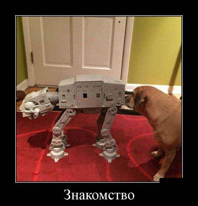 Демотиваторы на 28.01.2016г (30 фото)