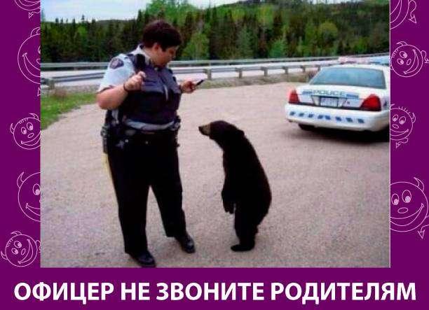 Приколняшка 526 #юмор #приколы #смешные картинки