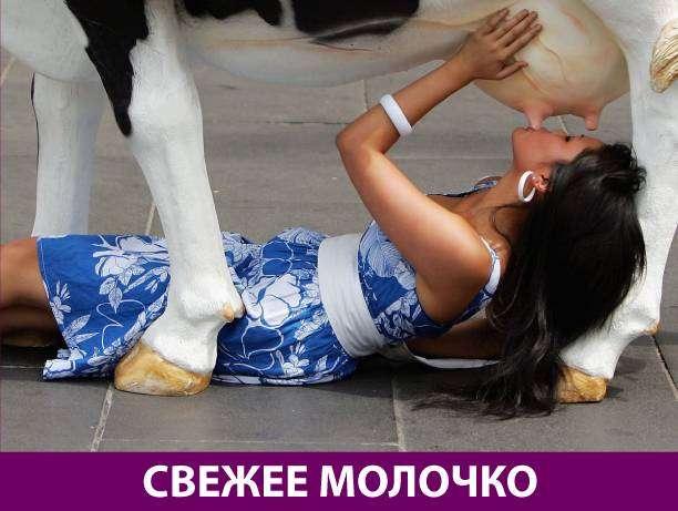 Приколняшка 636 #юмор #приколы #смешные картинки