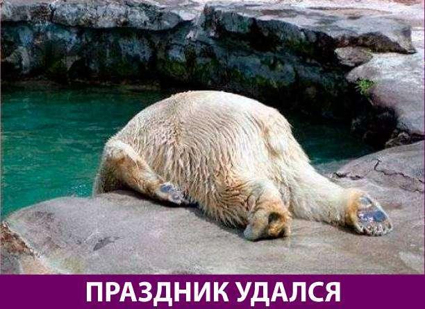 Приколняшка 647 #юмор #приколы #смешные картинки