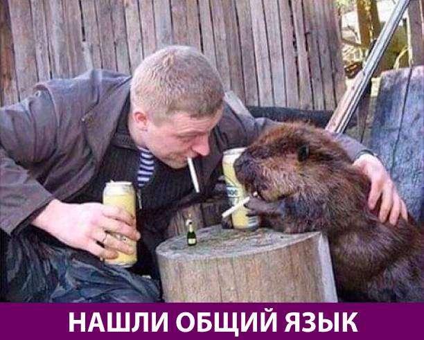 Приколняшка 649 #юмор #приколы #смешные картинки