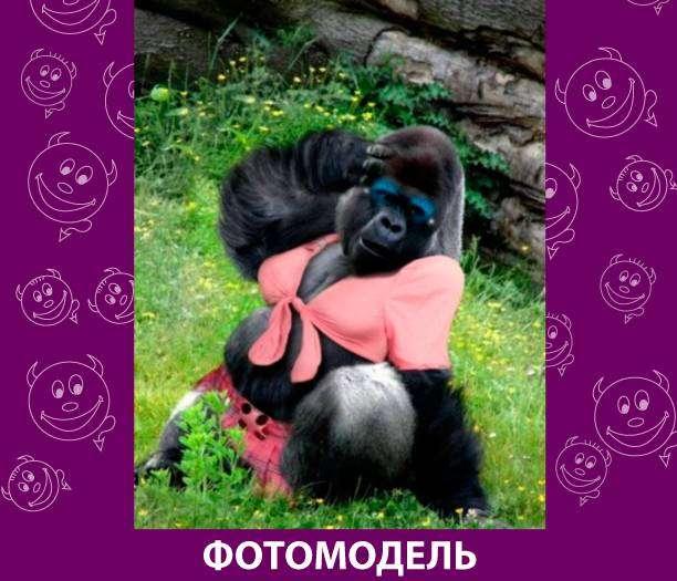 Приколняшка 681 #юмор #приколы #смешные картинки