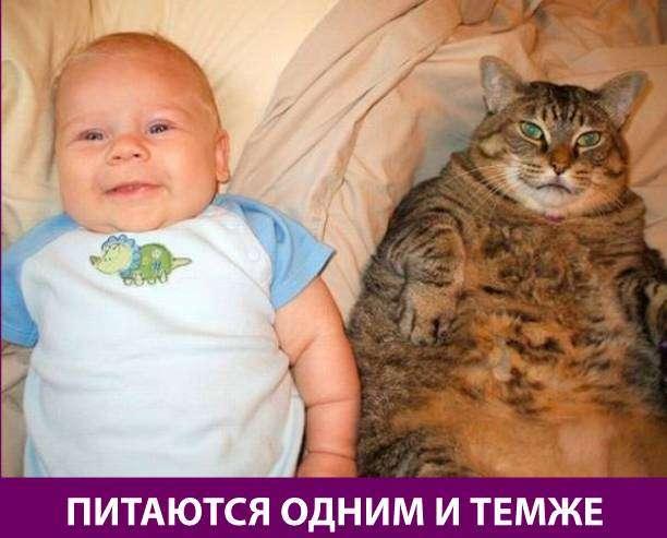 Приколняшка 684 #юмор #приколы #смешные картинки