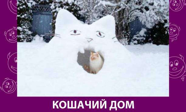 Приколняшка 694 #юмор #приколы #смешные картинки