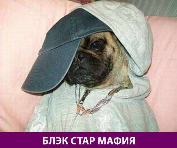 Приколняшка 695 #юмор #приколы #смешные картинки
