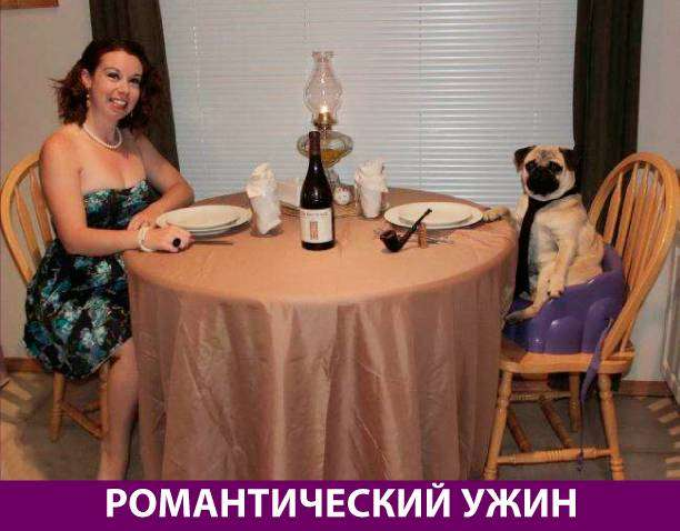 Приколняшка 700 #юмор #приколы #смешные картинки