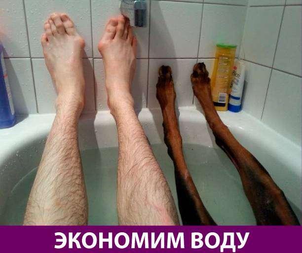 Приколняшка 713 #юмор #приколы #смешные картинки