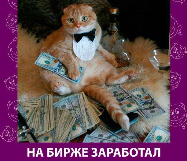 Приколняшка 721 #юмор #приколы #смешные картинки