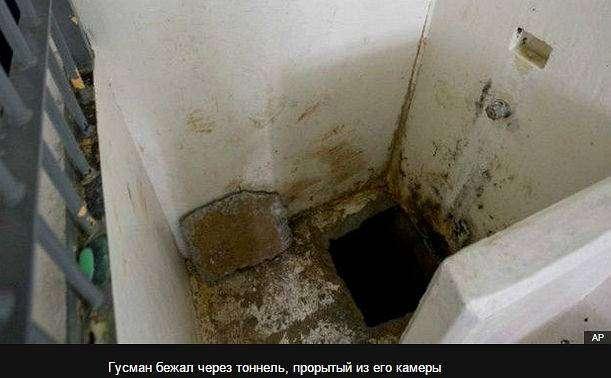 Коротышка Гусман: мышеловка для короля наркобизнеса