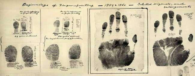 Откатаем пальчики? Интересные факты об отпечатках пальцев