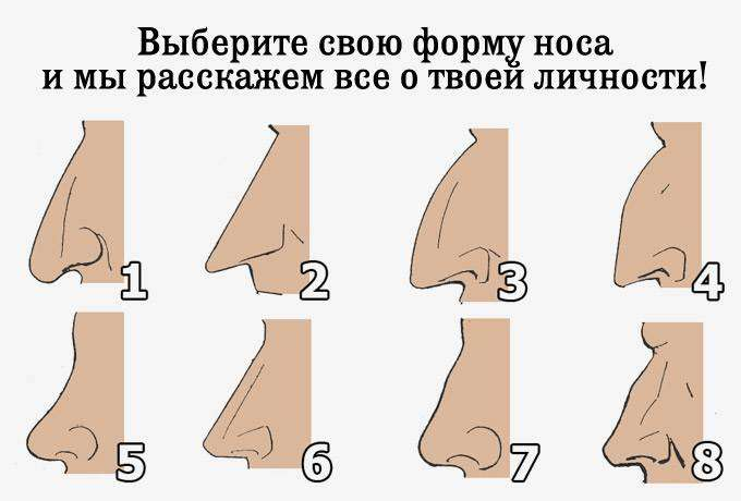 Выберите свою форму носа и мы расскажем все о твоей личности!