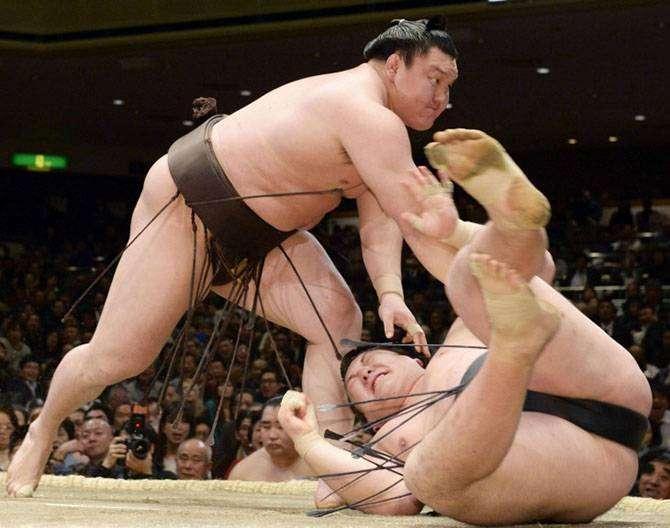 10 интересных фактов, которые вы не знали о сумо