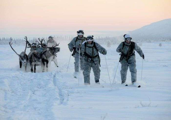 Российские разведчики научились управлять упряжками (15 фото)