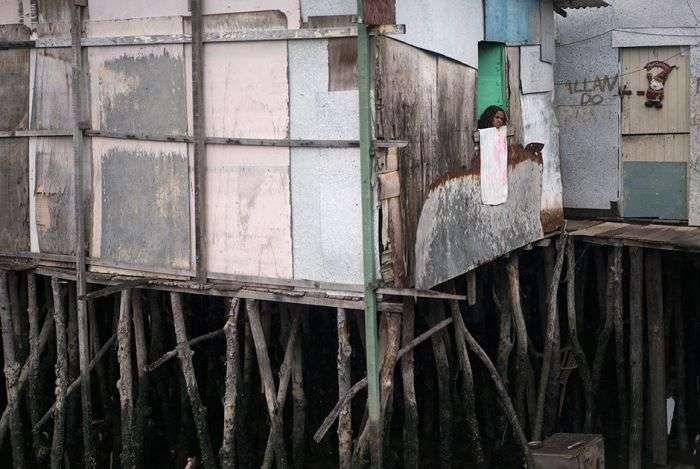 Лихорадка Зика - болезнь трущоб (13 фото)