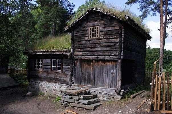 Живые крыши домов в Норвегии (8 фото)