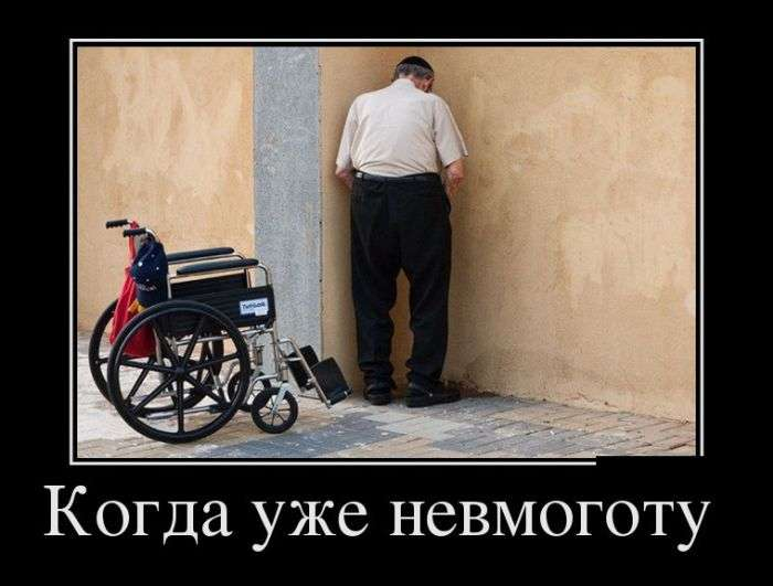 Демотиваторы на 8.02.2016г (30 фото)