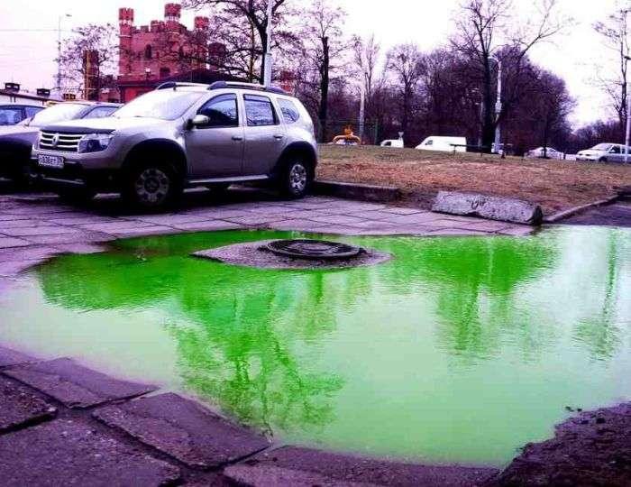 В центре Калининграда появились ярко-зеленые лужи (2 фото)