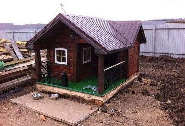 Дом для собаки (5 фото)