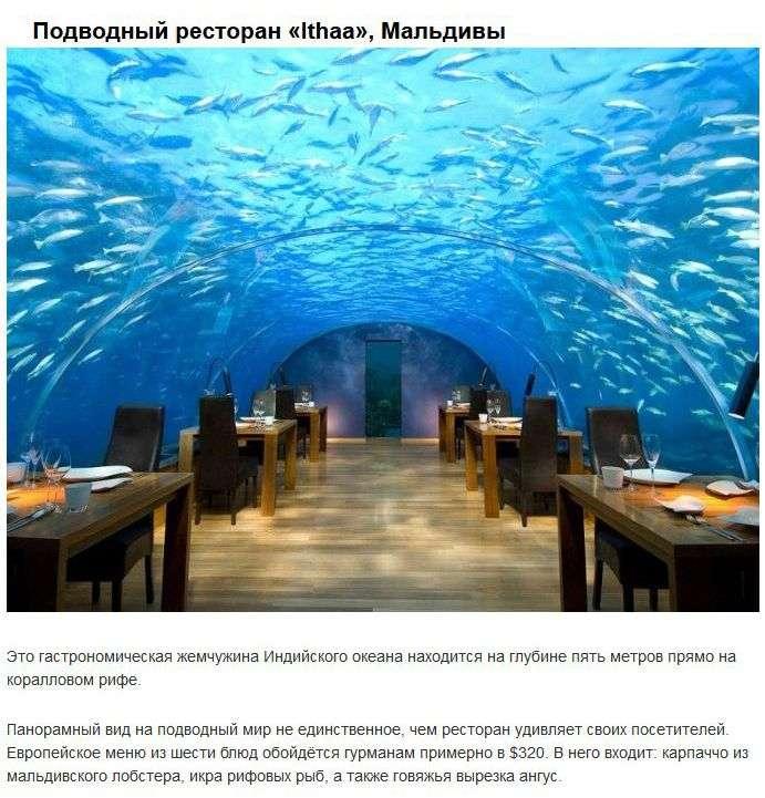 Самые дорогие рестораны в мире (8 фото)