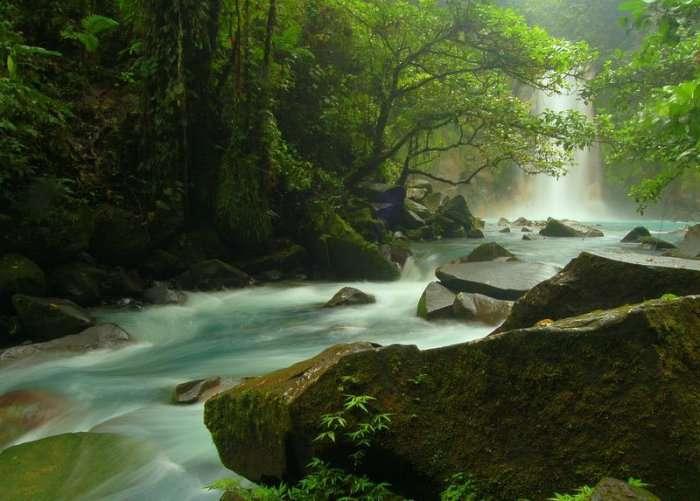 Голубая река Рио Селесте (7 фото)