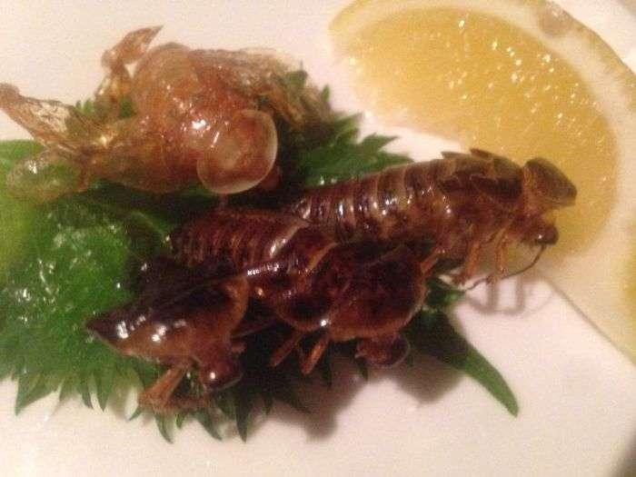 Экзотические мясные блюда японского ресторана (12 фото)