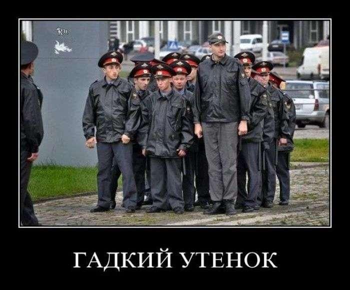 Демотиваторы на 16.02.2016г (30 фото)