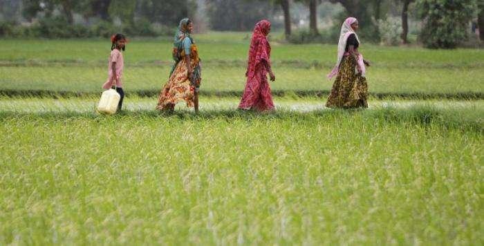 Жизнь в индийских деревнях (18 фото)