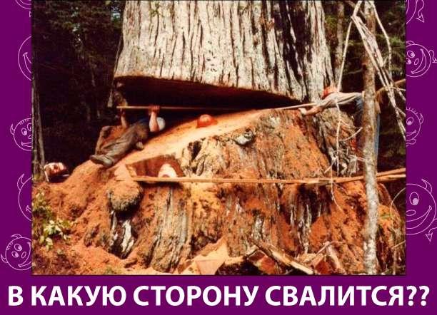Приколняшка 792 #юмор #приколы #смешные картинки