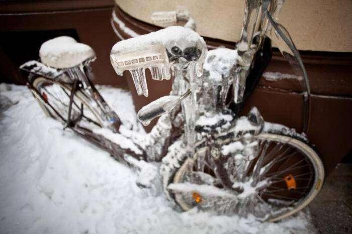 Глобальное потепление (21 фото)