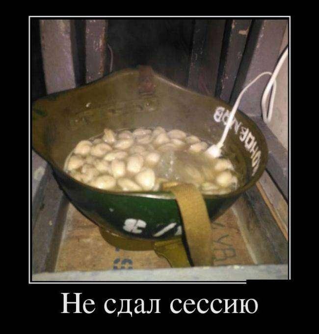 Демотиваторы на 04.03.2016г (30 фото)