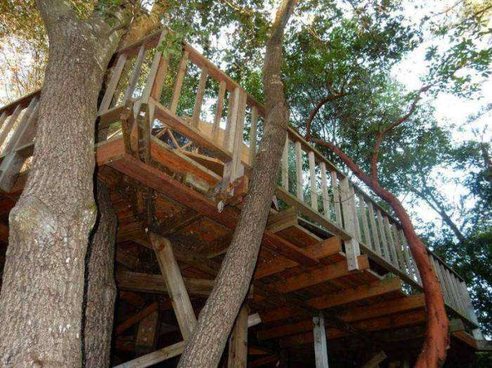 Внутри домика-гриба — самого популярного объекта (12 фото)