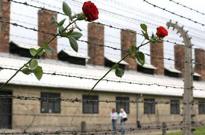 Освенцим. 65 (38 фото)