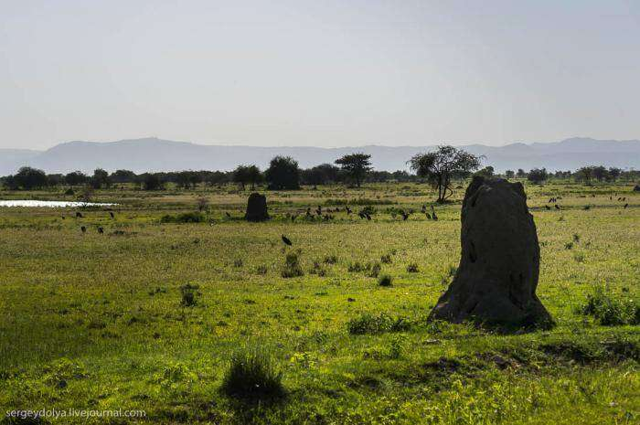 Танзания. Впечатления (30 фото)