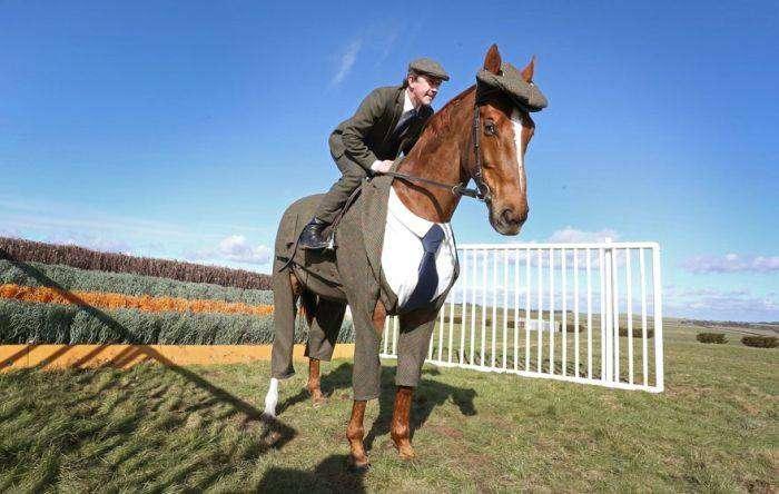 Представили первый в мире костюм-тройку для лошади (4 фото)