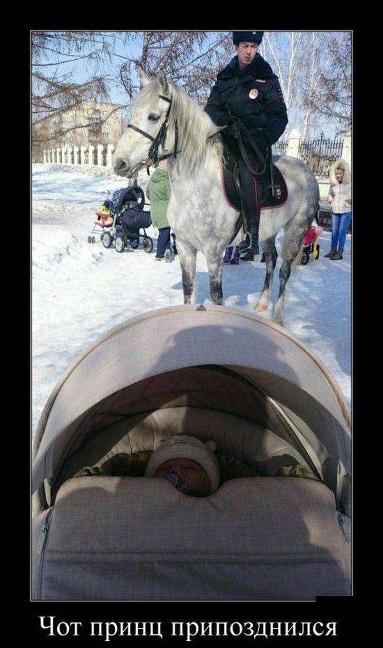 Демотиваторы на 16.03.2016г (30 фото)